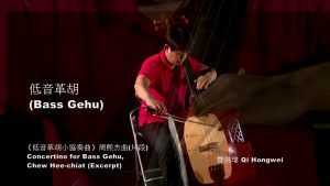 Read more about the article Bowed Strings: Bass Gehu