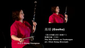 Bowed Strings: Gaohu 高胡