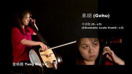 Bowed Strings: Gehu 革胡