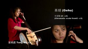 Read more about the article Bowed Strings: Gehu 革胡
