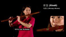Wind Instruments: Xindi 新笛 / Dadi 大笛