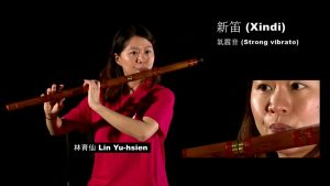 Read more about the article Wind Instruments: Xindi 新笛 / Dadi 大笛